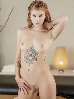 Arya Fae