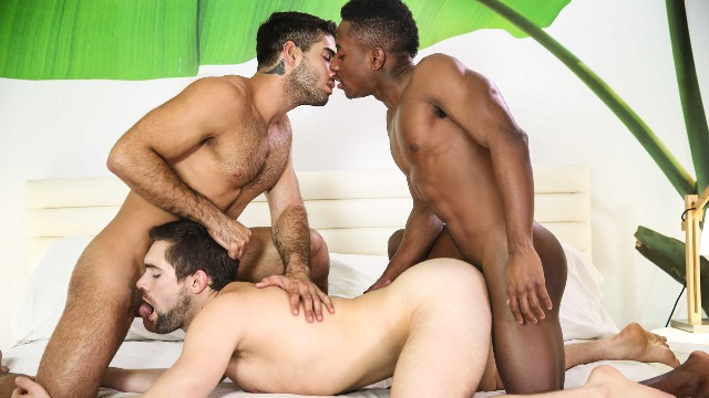 Men - Thoroughbred Part 3 Diego Sans, Griffin Barrows And Liam Cyber Threesome